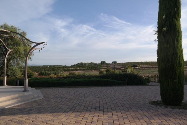 100 hektar med vinranker